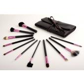 Blink in Pink Professional Makeup Brushes 11 Piece Set with Free Brush Roll